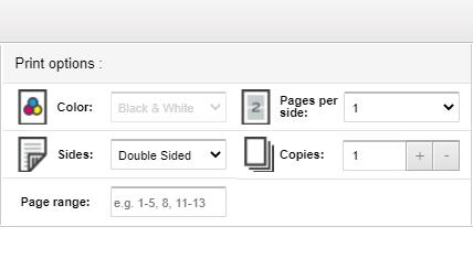 Print Options Menu