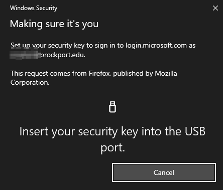 Now insert your Yubicokey into your computer via USB: