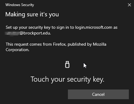 Now, you need to release your security code stored in the YubicoKey. You can now do this by pressing the button on the key.